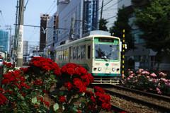"""TODEN Rose Station """"Machiya"""" (Machiya, Tokyo, Japan)"""