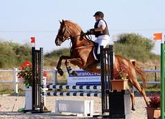essais equitation - Photo of Vitry-lès-Nogent