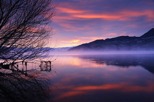 morning newzealand sky mist mountain lake reflection tree water beautiful fog clouds mirror purple stunning otago