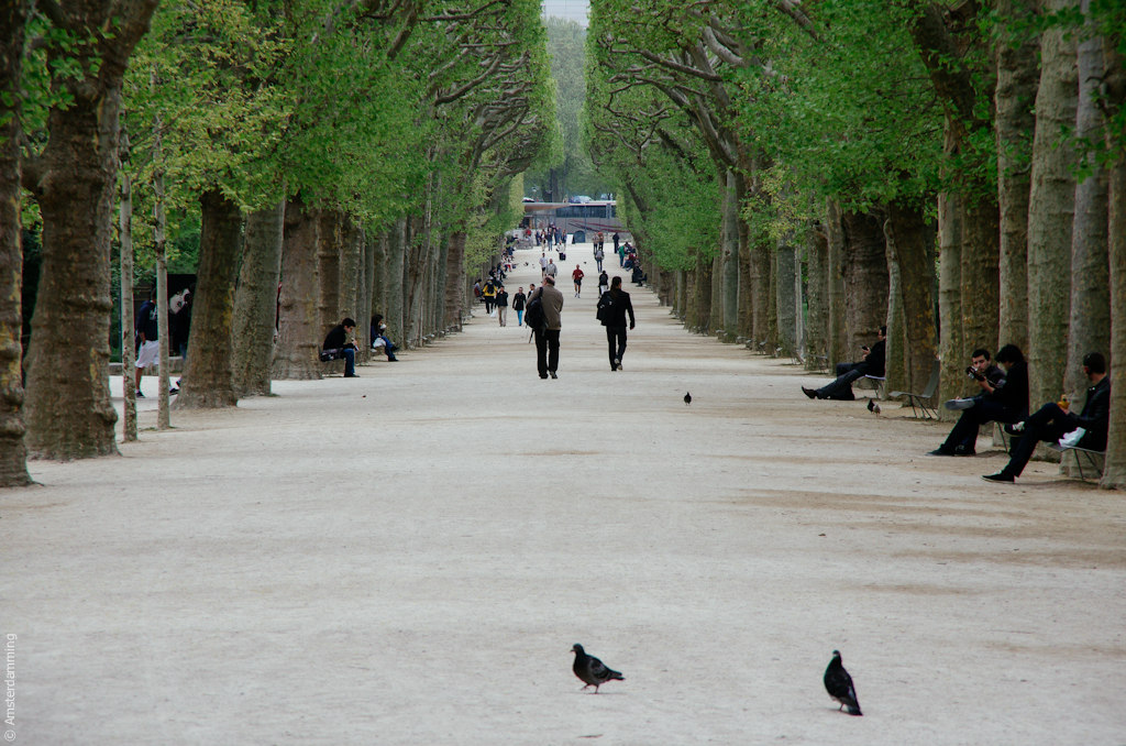 Springtime in Paris