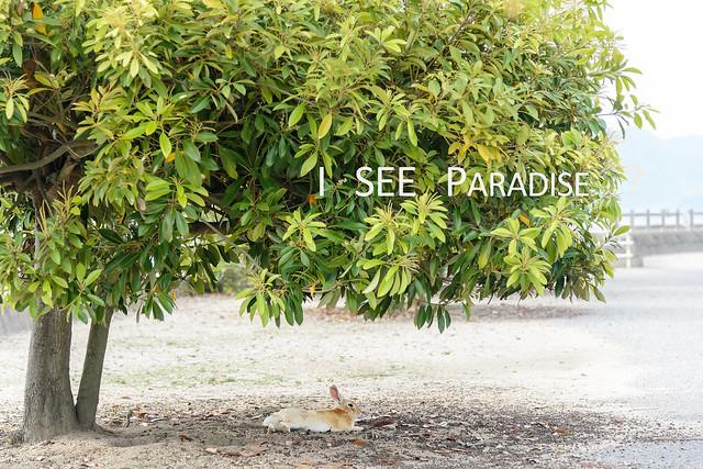 2014.0601.1617.41-Paradise