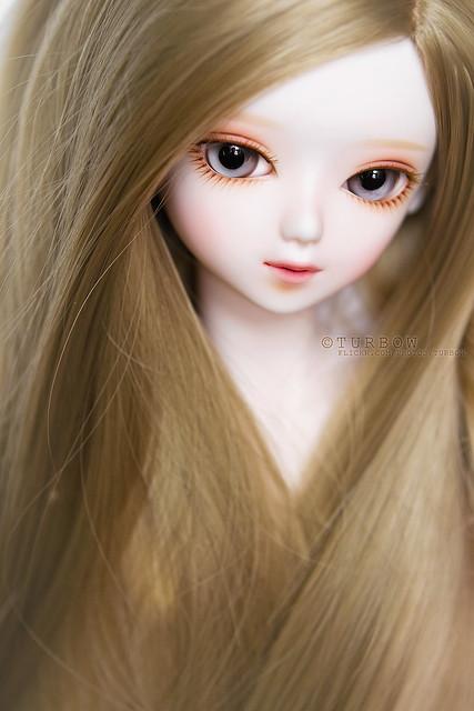 Blossom Jasmine