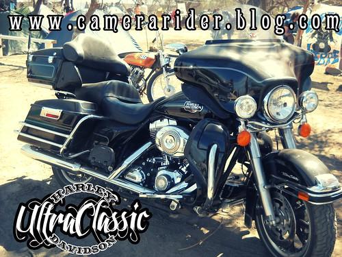 Harley Davidson. Ultra Classic. By www.camerarider.blog.com by [º(o) ] Camerarider