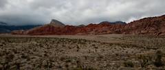 Las Vegas 2012-8225