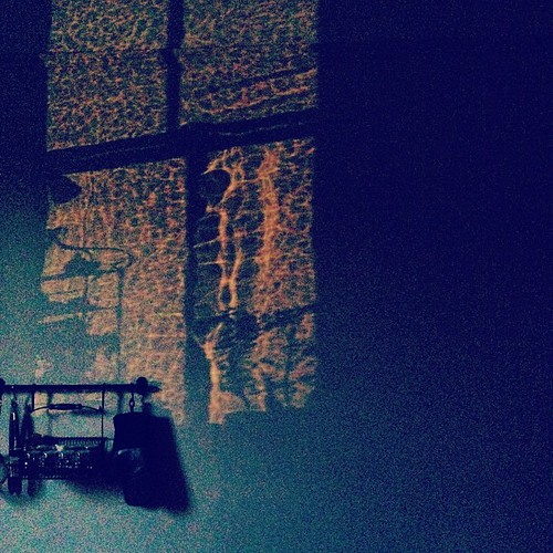 Day 204 of Project 365: Kitchen Shadows
