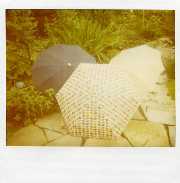 polaroid - umbrellas