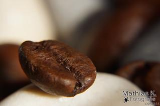 Kaffeebohne | Projekt 365 | Tag 95