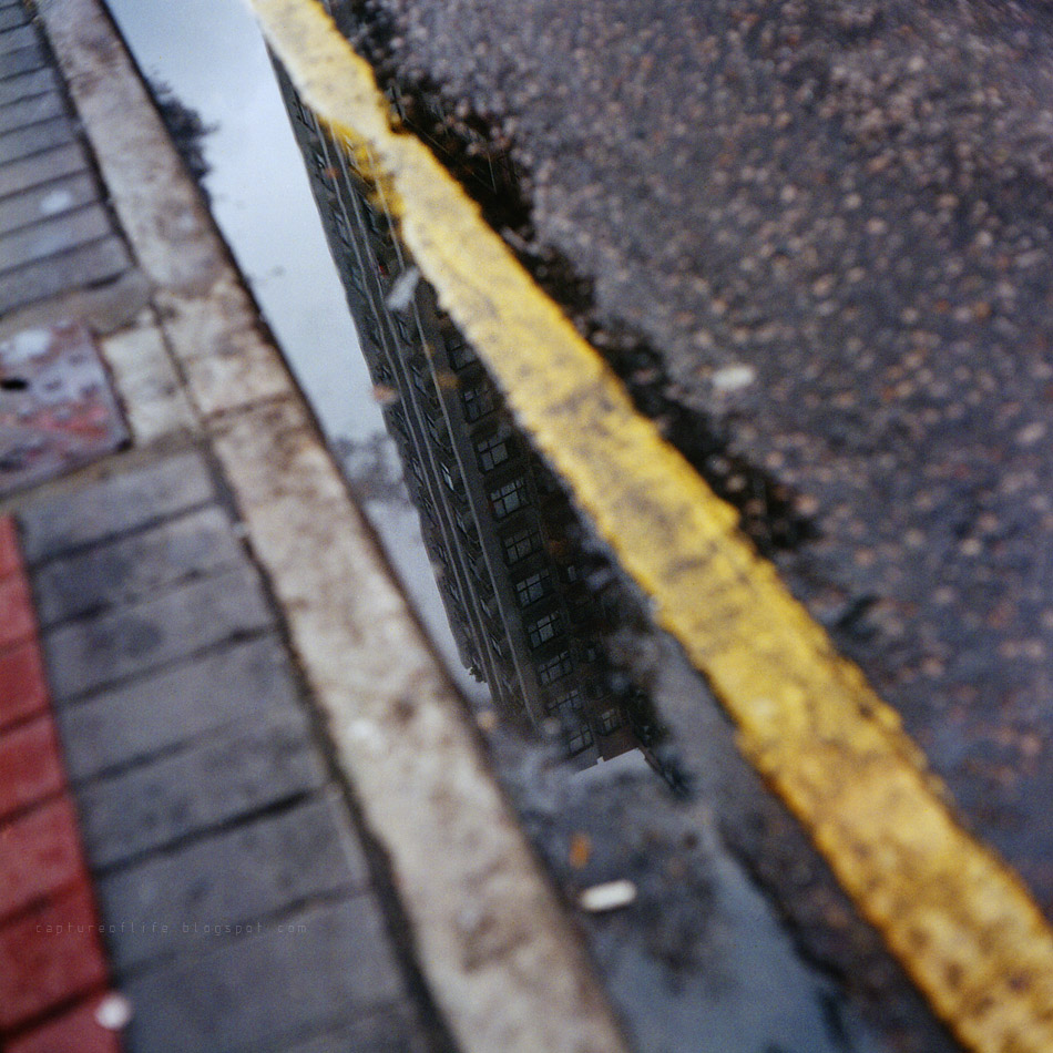 snaps after rain