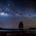 Milky Way over Tree by BP Chua
