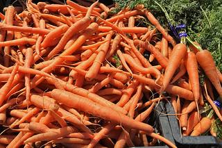 Ferry Plaza Farmers Market - Carrots