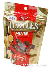 DeMets Turtle Minis