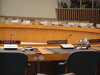 inside the UN Security Council