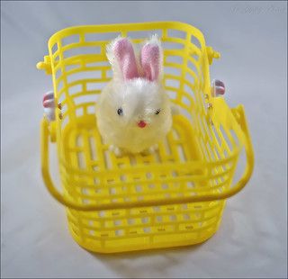 365 Days In Colour-A Tisket A Tasket There's A Bunnie In My Yellow Basket