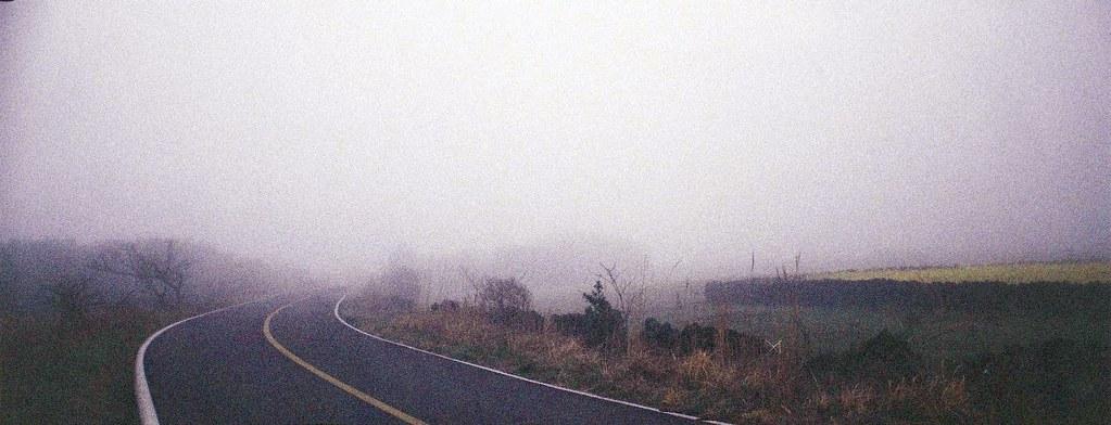 Jeju Highway Fog