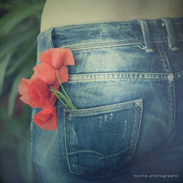 [331/365] La primavera en un bolsillo
