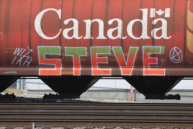 Slide 5: Steve