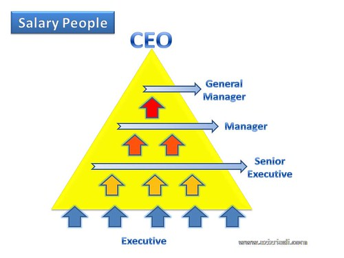 Salary People Triangle