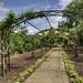 Landscape, Cheekwood Botanical Garden, Nashville, Tennessee 5