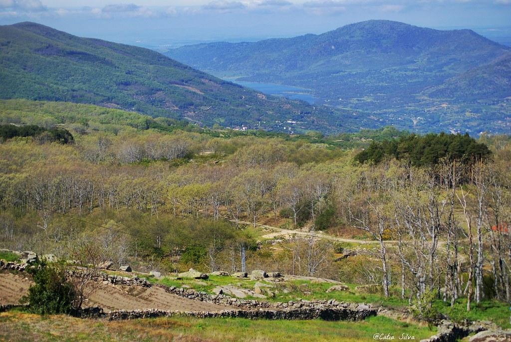 Extremadura_Valle del Jerte_ EL Piornal (1)