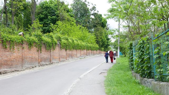 road to Lviv botanic garden. Ukraine