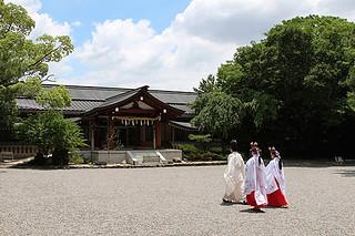 shrine017