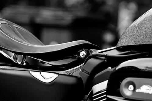 Harley·Davidson_7581