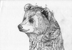 Bear Rock // Sketchbook Page