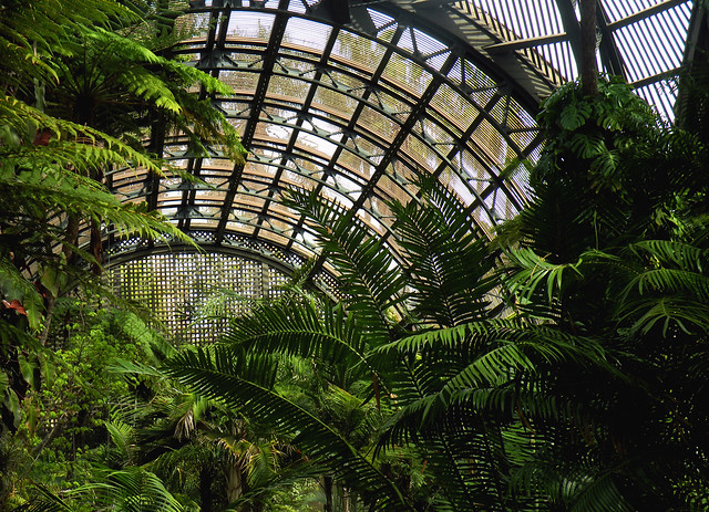 Inside the Botanical Building