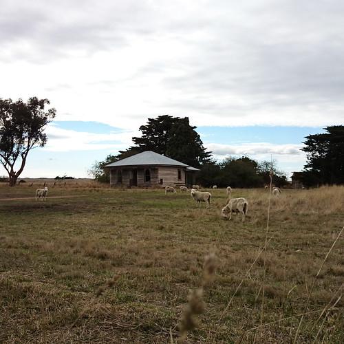 Abandoned Farmhouse In Monegeetta, Victoria, Australia