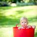 Bea in a bucket by nicholasjon