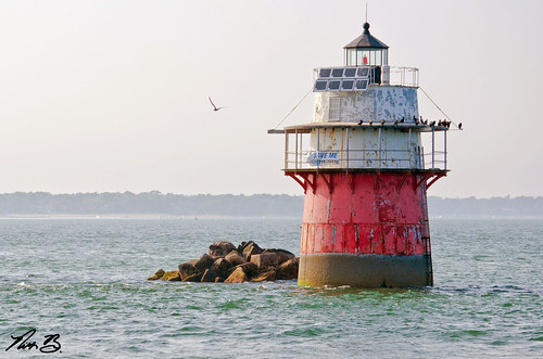 ocean travel light sea sun lighthouse house mist bird me water birds misty fog bug landscape ma photography lights evening bay harbor pier boat photo nikon rocks waterfront seagull nick foggy scenic plymouth scene save front nb adventure nicholas help photograph restore land cape restoration mass nikkor scape cod benson the duxbury lighthousetrek 55300mm d7000
