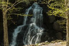 VT_Waterfalls-1252