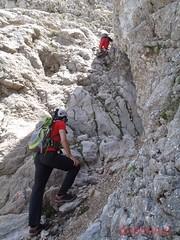 Morro d'en Pelut i Puig Major (54)
