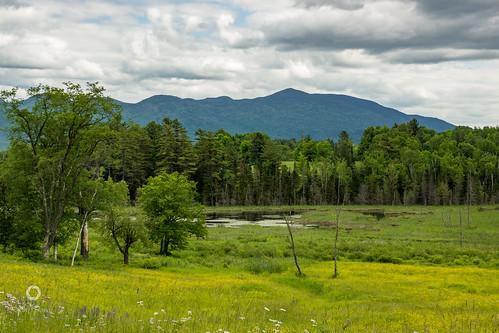 newengland newhampshire sethjdeweyphotography mountains pond scenic whitemountains wildflowers