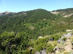 Le hameau inférieur des bergeries de Vitellile