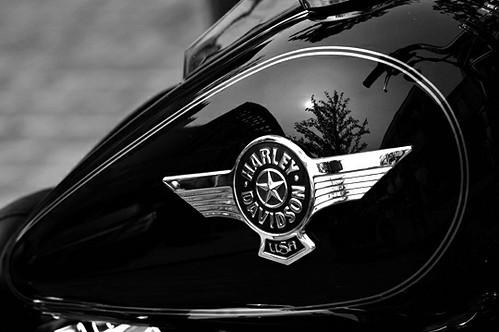 Harley·Davidson_7596