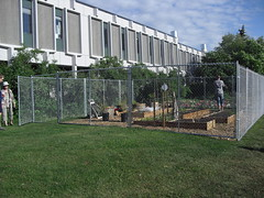 Fence Construction 006