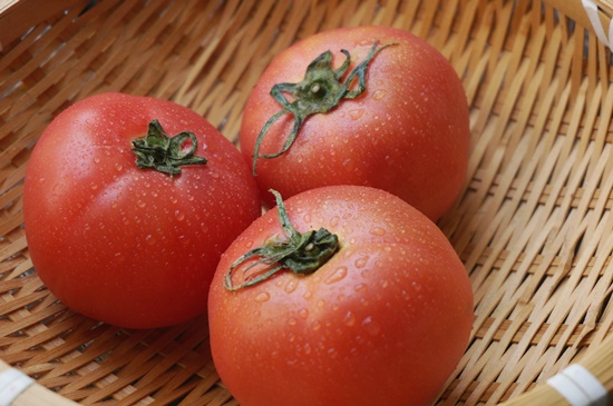 sawamura-tomato004