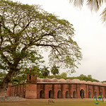 Shait Gumbad Mosque Under Tree - Bagerhat, Bangladesh
