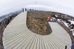 curved boardwalk