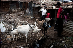 Helseklinikk i Kibera, Kenya