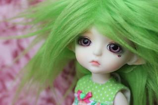 Lala Lime