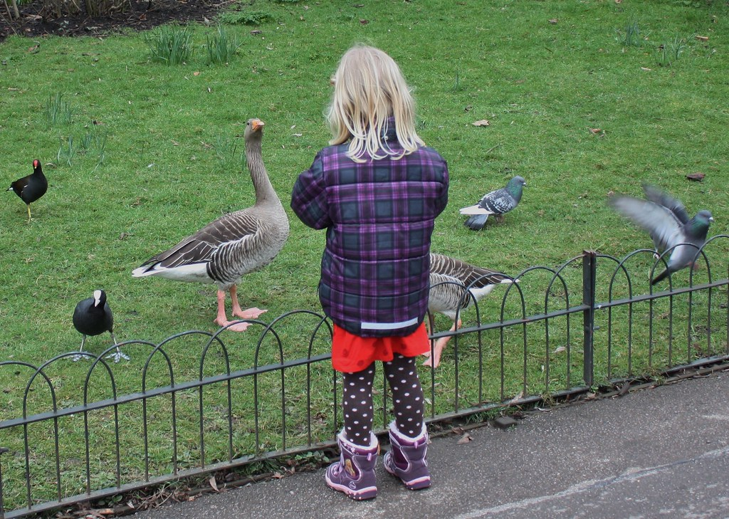 Carina feeding the birds in Regents Park