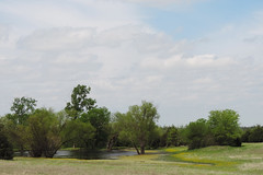 Ennis - John Constable-like Landscape