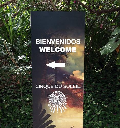 Cirque du Soleil - Joyà