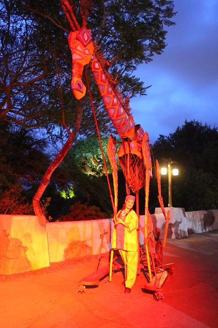 Harambe Nights at Disney's Animal Kingdom