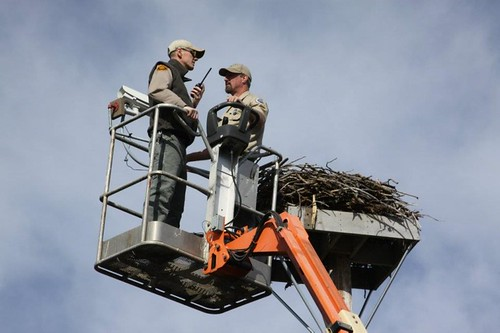 Nate Clark, Assistant Park Manager, and John Mitchell, park Ranger, place the cam