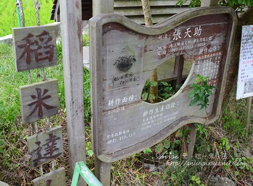 日暉02-004.jpg