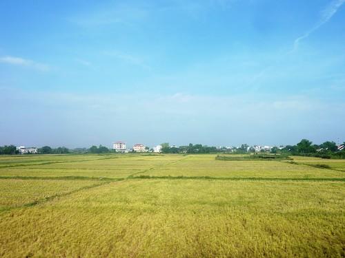 V-Route Quy Nhon-Da Nang (3)