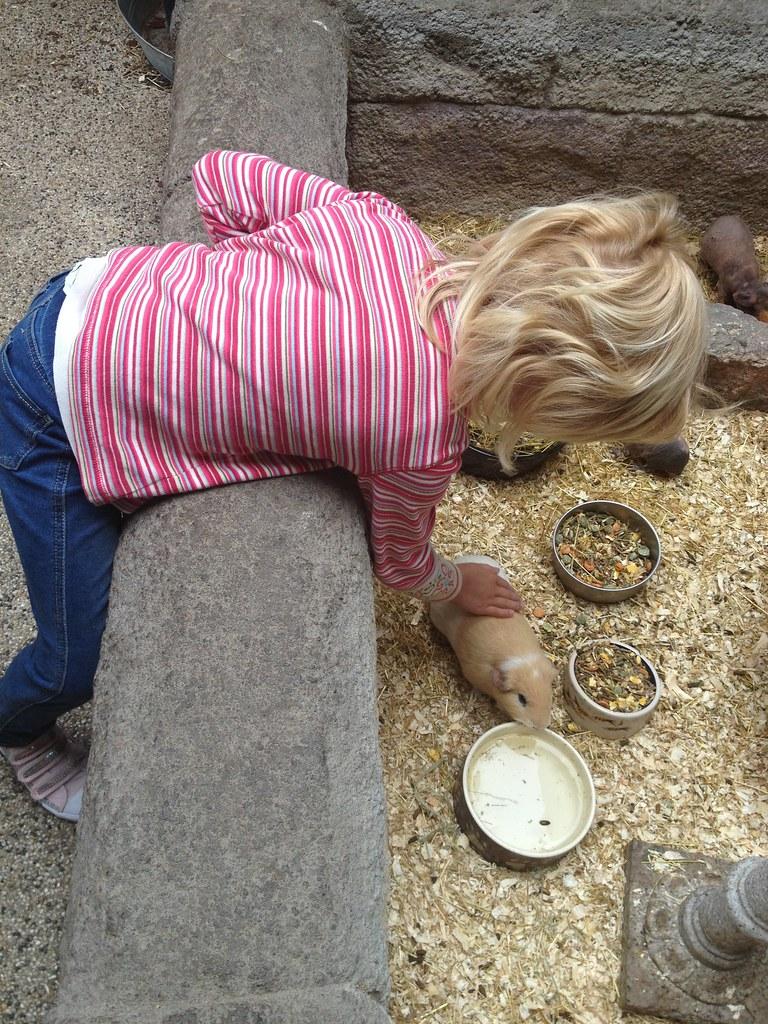 A Photo A Day Keeps The Doctor Away På Tur Til Zoo Zity Vist Nok
